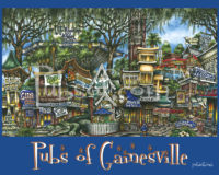 Pubs of Gainesville poster